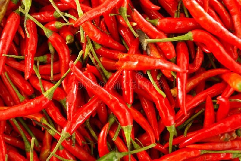 Горячие перцы на стойле рынка в Пхукете стоковая фотография