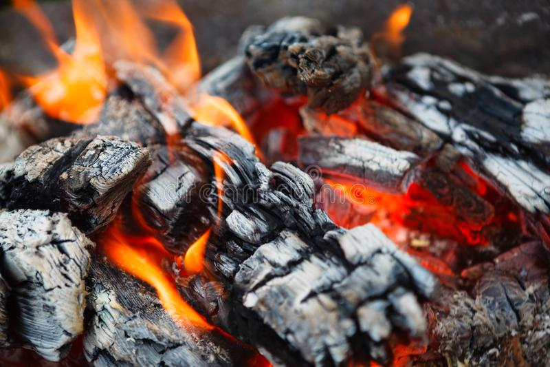 Горячие угли в огне стоковое изображение