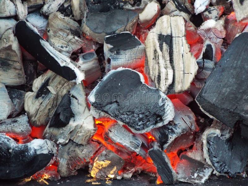 Горячие угли увольняют летом в природе стоковое фото rf