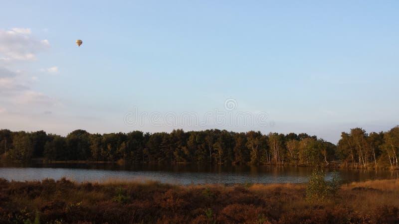 Горячий воздушный шар над озером леса стоковая фотография rf