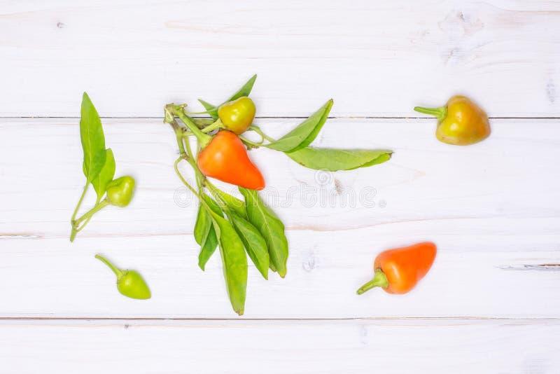 Горячий красный оранжевый перец chili на серой древесине стоковое изображение rf