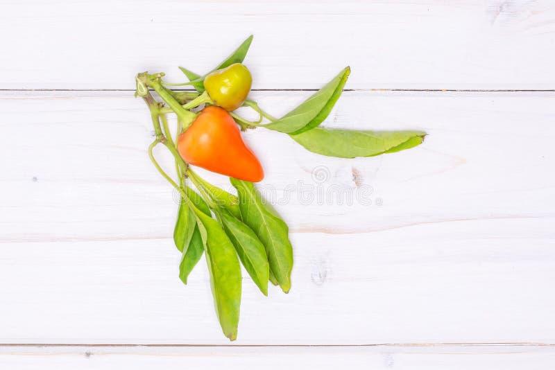 Горячий красный оранжевый перец chili на серой древесине стоковые изображения
