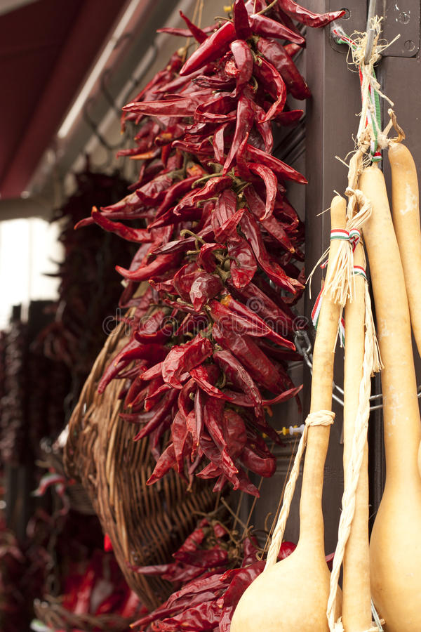горячий красный цвет паприки стоковое фото