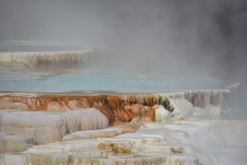 горячий мамонтовый национальный парк скачет yellowstone стоковые изображения rf