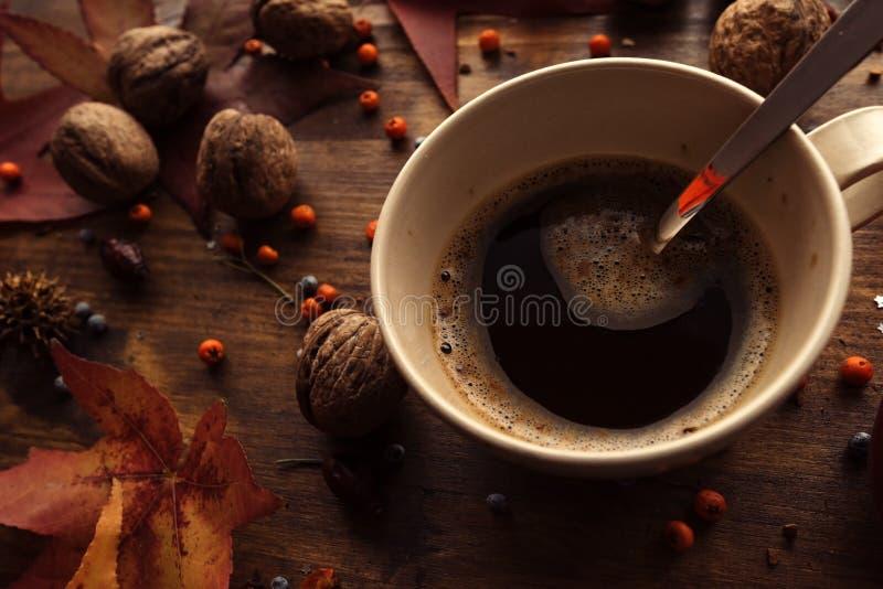 Горячий напиток кофе на холодные дни осени стоковые фотографии rf