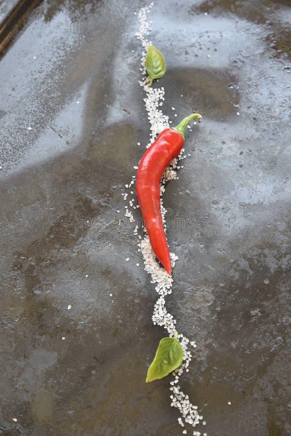 Горячий перец и соль стоковые фотографии rf