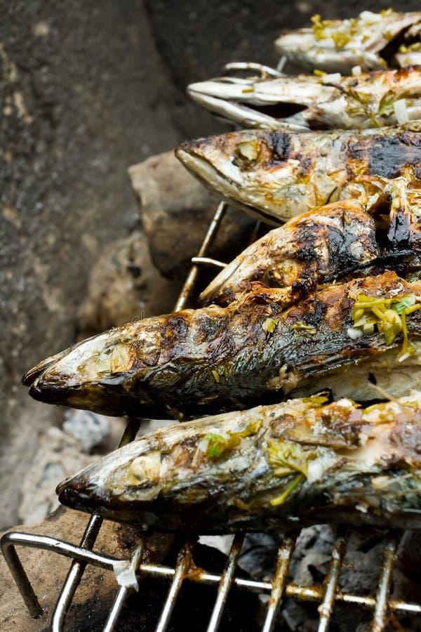 горячий рыб зажженный решеткой стоковое изображение
