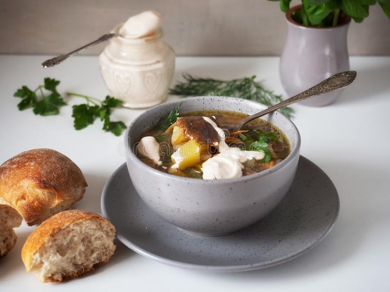 Горячий суп гриба со сметаной в глубокой серой плите на белой предпосылке стоковая фотография rf