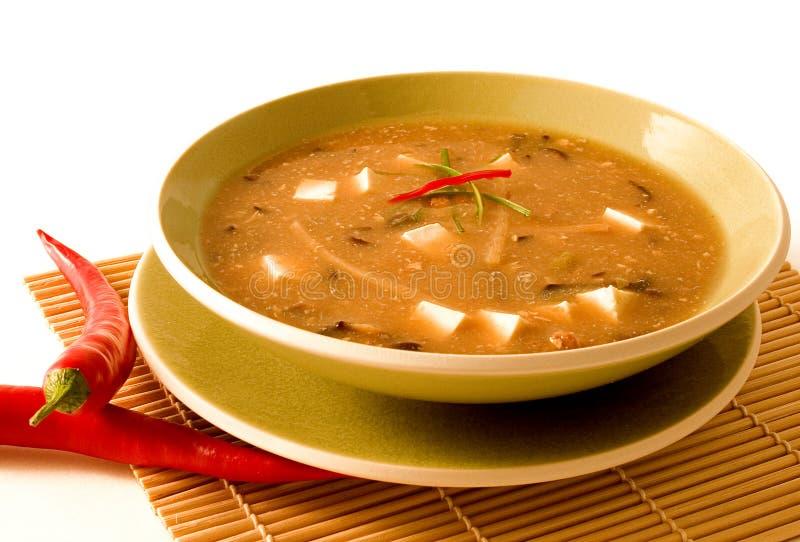 горячий суп кислый стоковые изображения rf