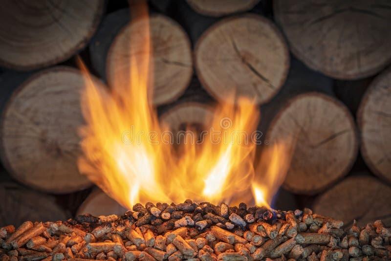 Горящая деревянная лепешка стоковое изображение