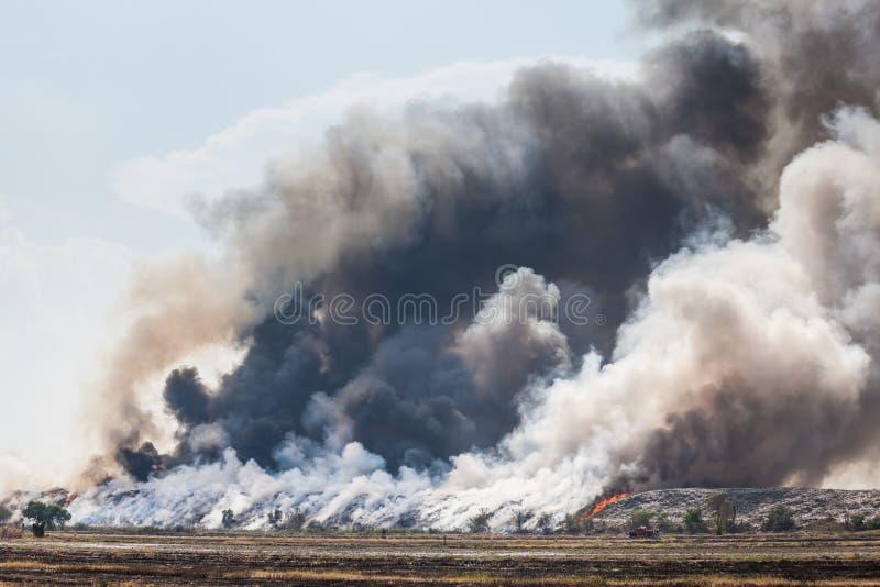 Download Горящая куча отброса дыма стоковое фото. изображение насчитывающей загрязнение - 40582632