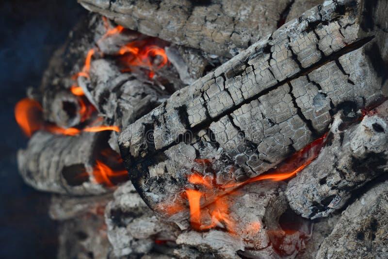 горящая древесина стоковое изображение rf