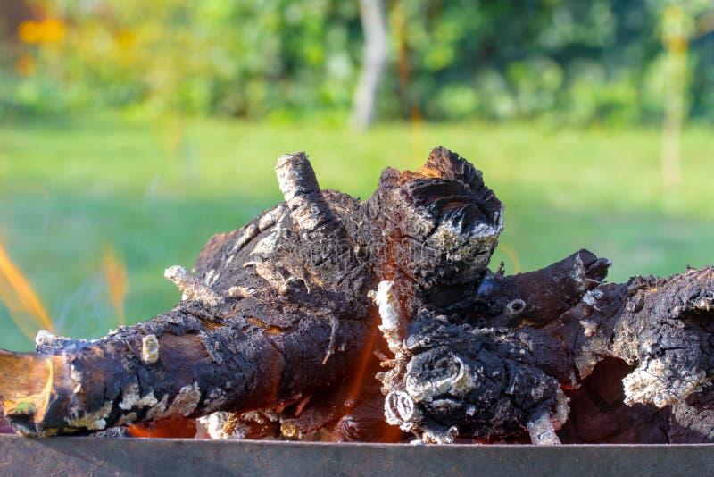 Горящие древесина и пламена стоковое фото rf