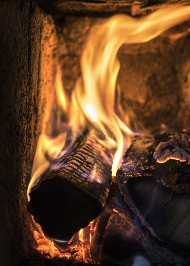 Горящие древесины в горячей плите стоковое изображение rf