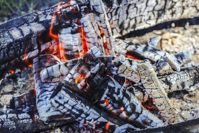 горящие угли стоковое изображение rf