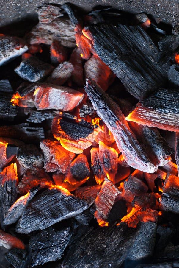 горящий уголь стоковые фото