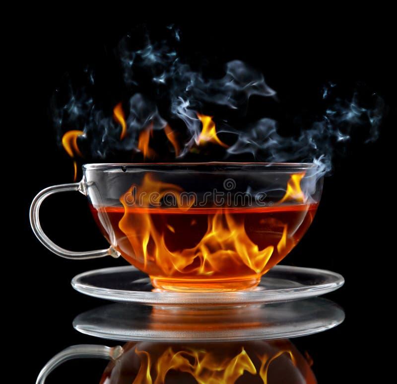 горящий чай стоковые изображения rf
