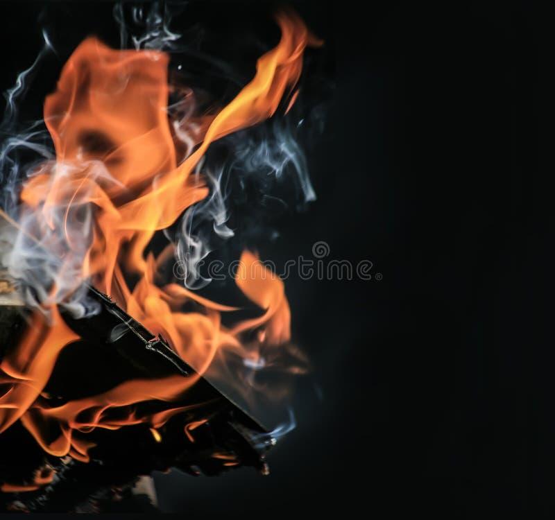 Download Горящий швырок березы стоковое фото. изображение насчитывающей цвет - 40591530
