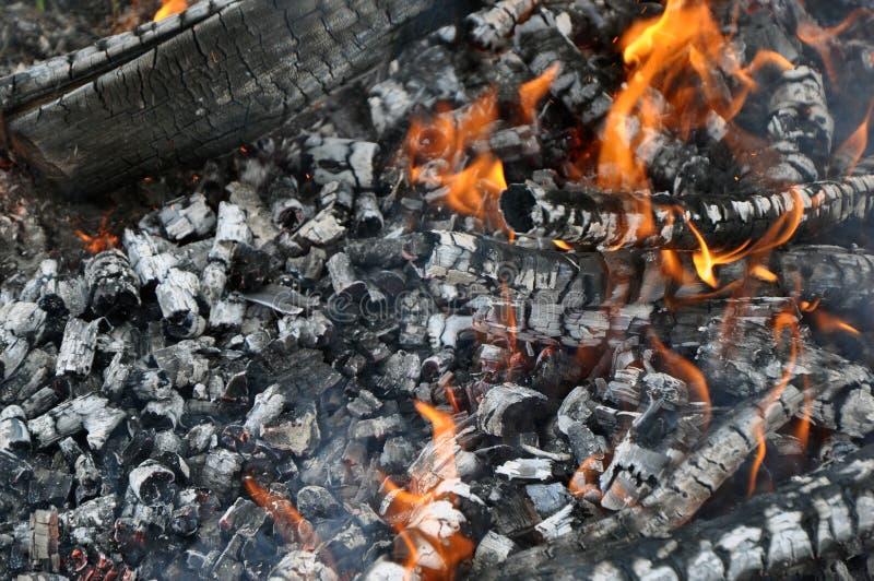 Горя oggr, горячие тлеющие угли Барбекю, гриль, kebab стоковое изображение rf