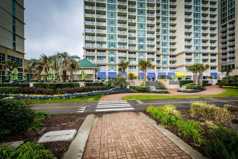Download Гостиницы дорожки и Oceanfront в Virginia Beach, Вирджинии Редакционное Изображение - изображение насчитывающей урбанско, outdoors: 81801315