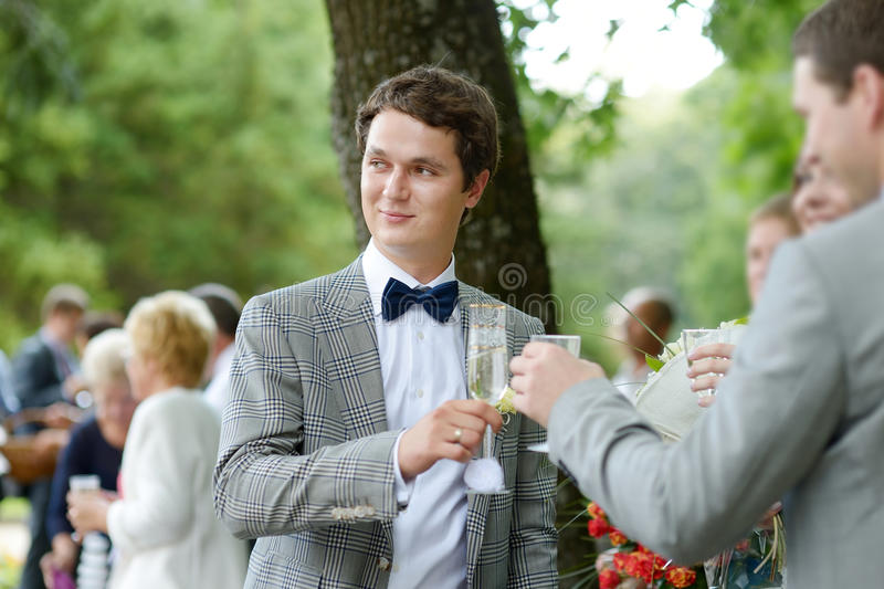 Гости свадьбы провозглашать счастливый groom стоковое изображение rf