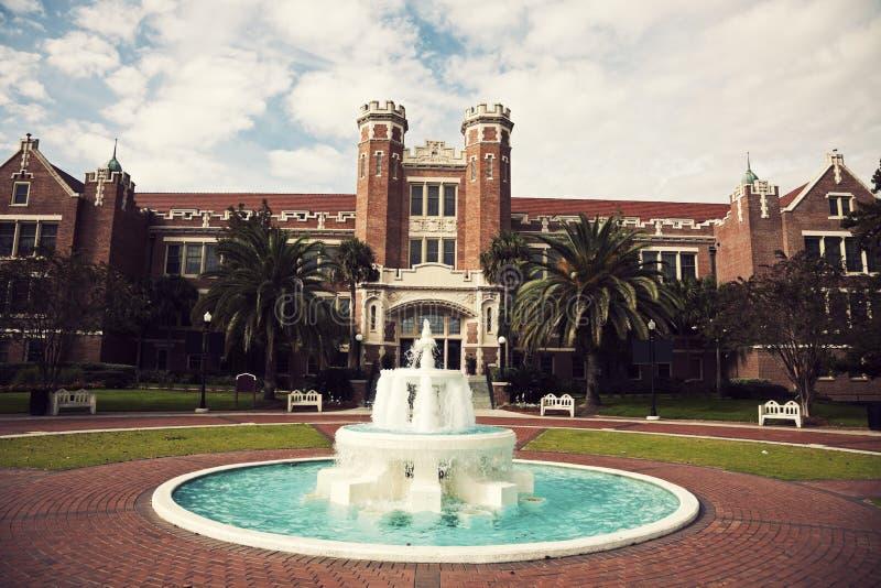 Государственный университет Флорида стоковые изображения rf