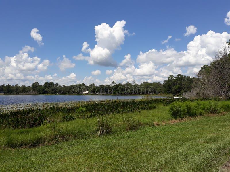 Государство Florida& x27; красота s на it& x27; самое лучшее s стоковое фото rf