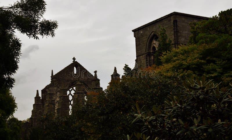 Готические руины - аббатство Holyrood стоковые изображения rf