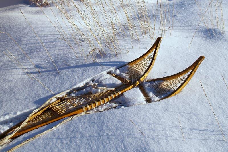 готовые snowshoes стоковые фотографии rf