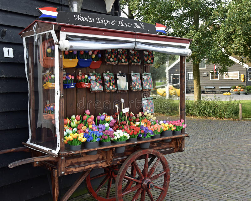 Голландские тюльпаны стоковые фотографии rf