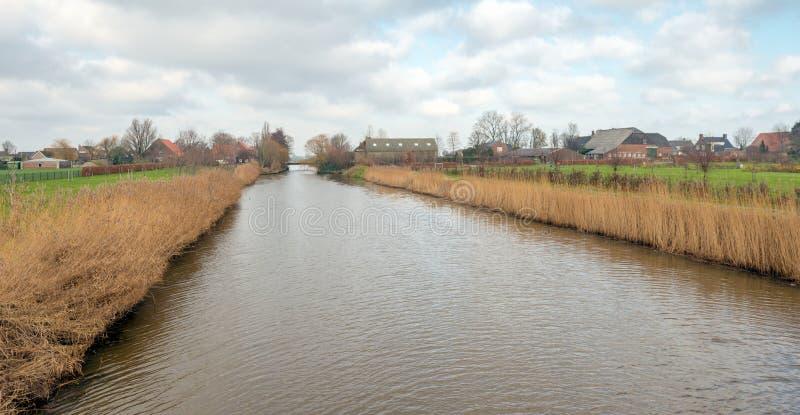 Голландский канал с пожелтетыми тростниками на банках стоковые изображения