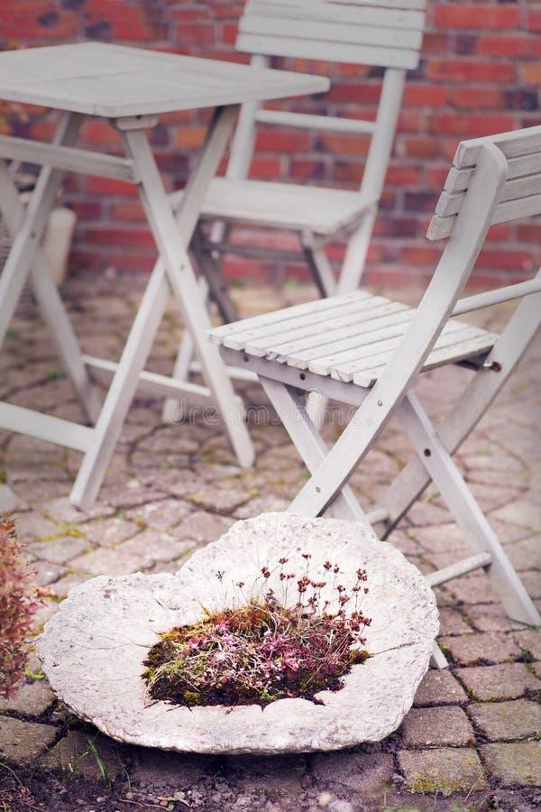 Голландский сад стоковая фотография