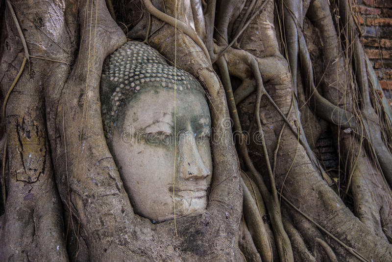 Download Голова Будды стоковое фото. изображение насчитывающей ashurbanipal - 40591894