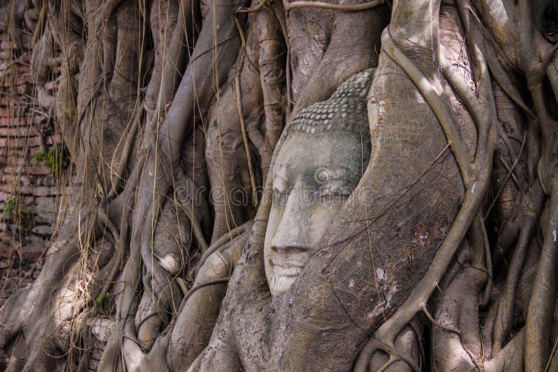 Download Голова Будды стоковое изображение. изображение насчитывающей прописно - 40592017