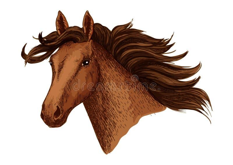 Голова лошади аравийского коричневого эскиза вектора мустанга иллюстрация вектора