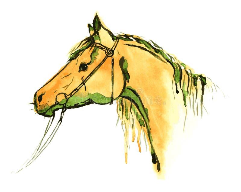 Голова лошади картины руки акварели оранжевая в уздечке на белизне бесплатная иллюстрация