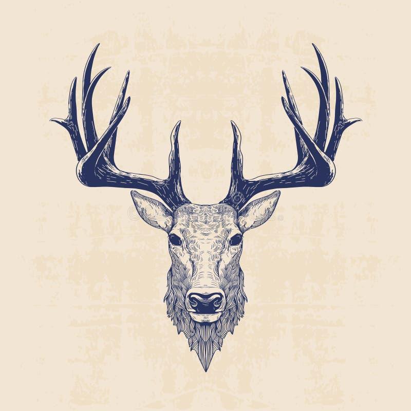 Download Голова оленей иллюстрация вектора. иллюстрации насчитывающей линия - 56916529