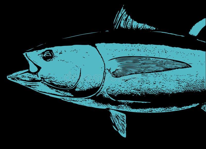 Голова рыб голубого тунца иллюстрация вектора