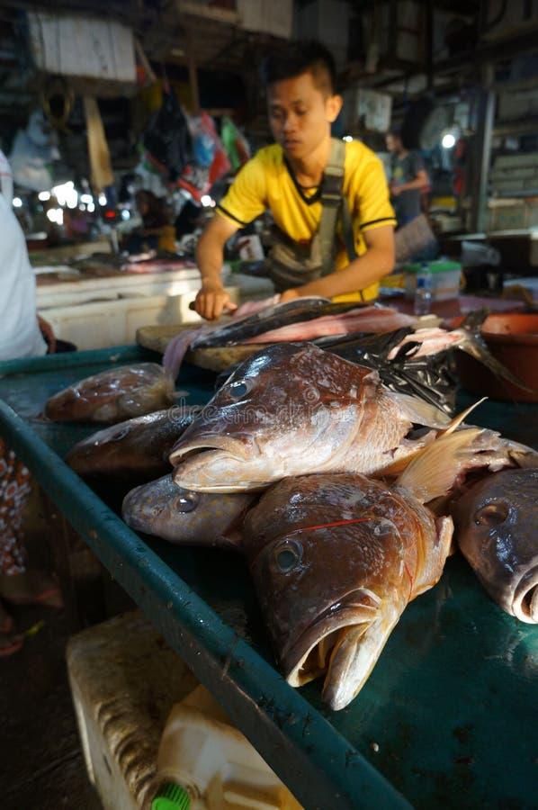 Голова рыб стоковое изображение