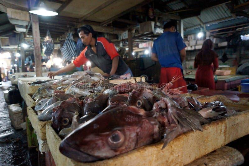 Голова рыб стоковые фото
