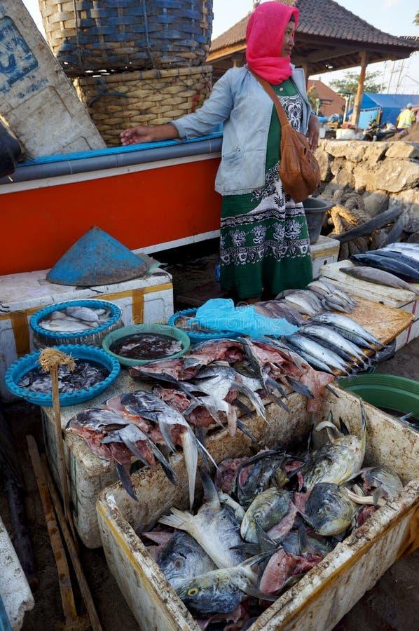 Голова рыб стоковые фотографии rf