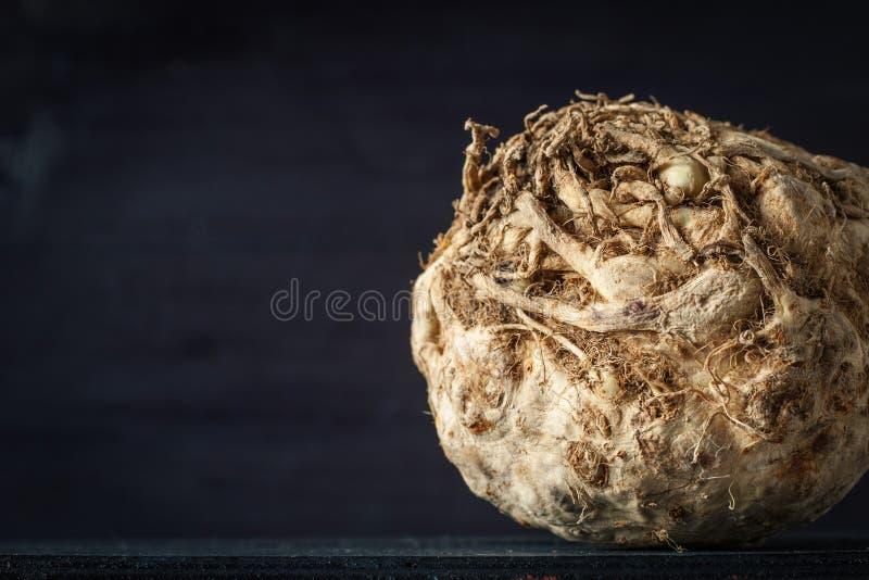 Голова сельдерея на темной предпосылке горизонтальной стоковые изображения rf