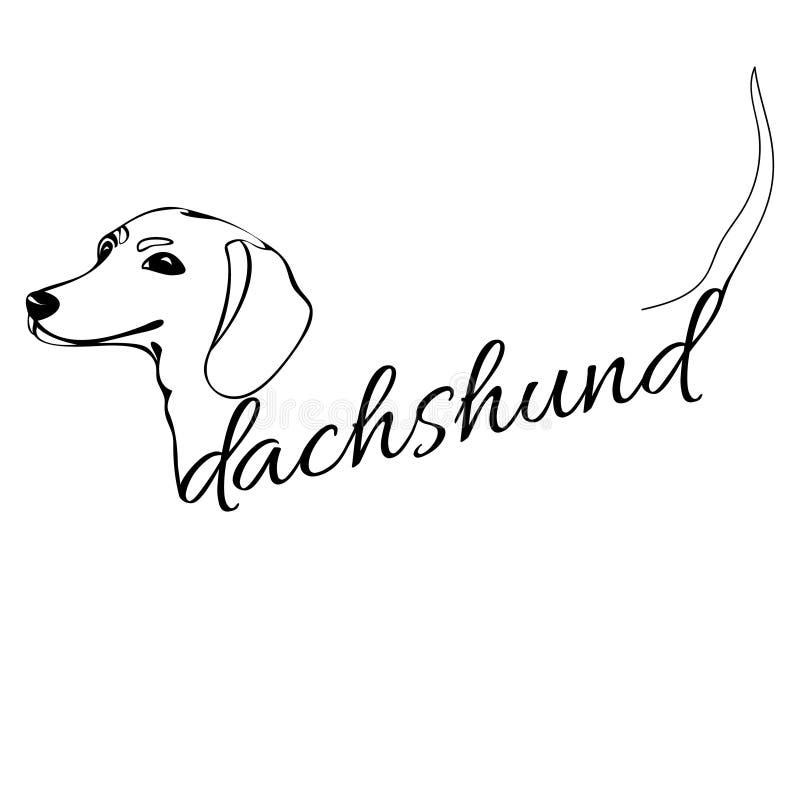 Голова собаки таксы иллюстрация вектора