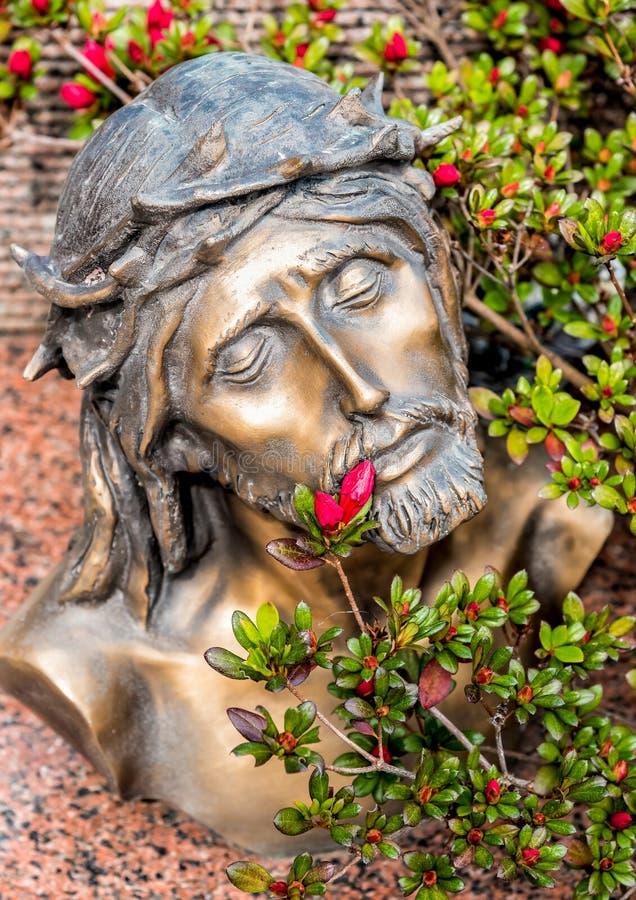 Голова увенчанная с терниями Иисуса Христоса стоковые изображения rf