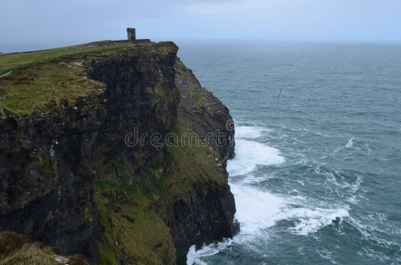 Голова ` s Hag на скале моря в графстве Кларе Ирландии стоковая фотография