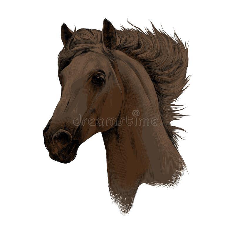 Головной вектор эскиза профиля лошади иллюстрация вектора