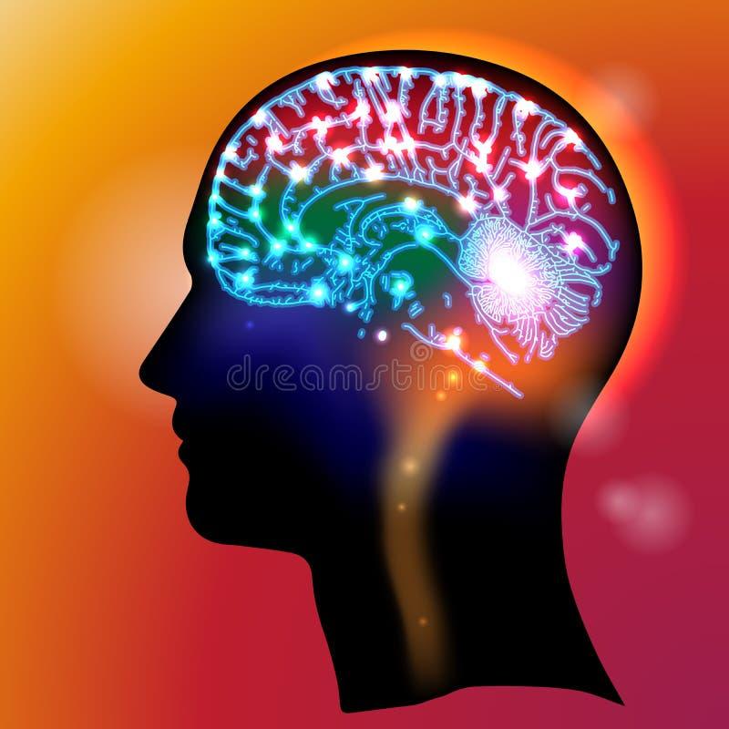 Головные нейроны иллюстрация штока