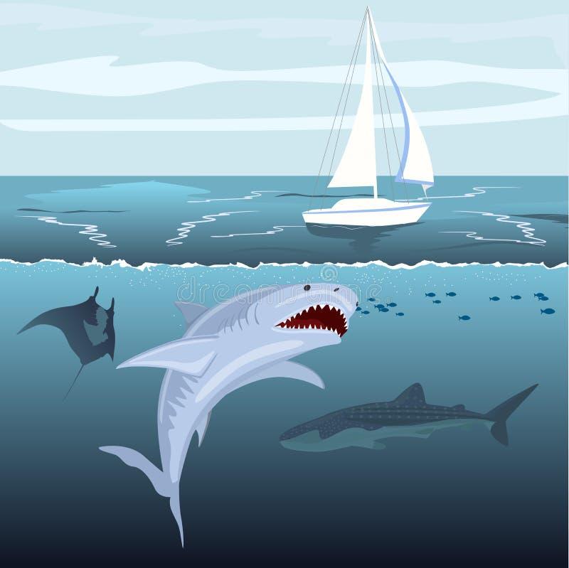 Голодные нападения акулы плавать корабль от воды океана бесплатная иллюстрация