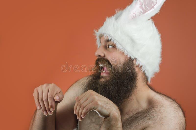 Голодный человек зайчика стоковые фото