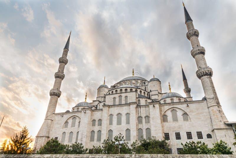Голубая мечеть, вид сзади, Стамбул, Турция стоковое фото rf